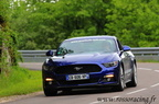 Ford Mustang   3798