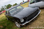 Ford Mustang 8U8A0360
